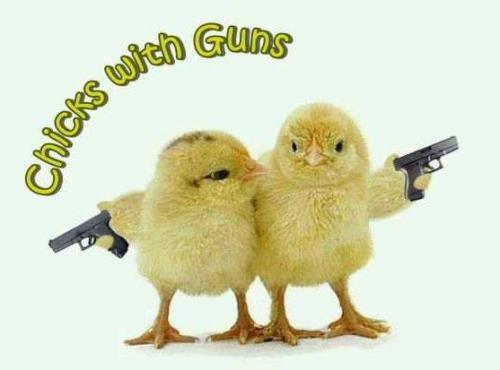 chicks-with-guns.jpg