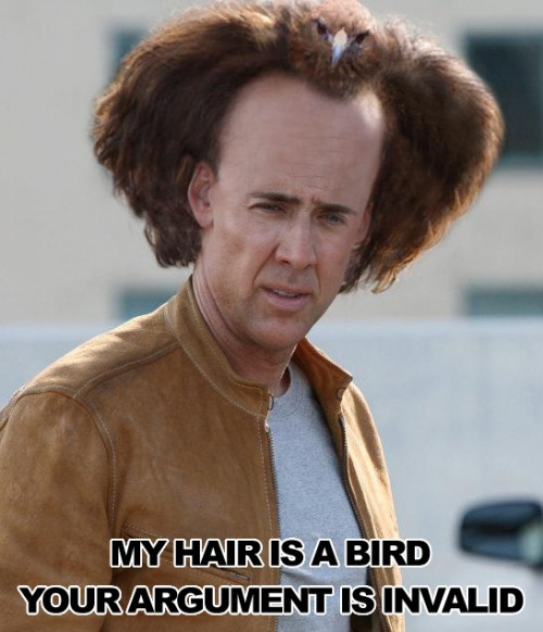 falcon hair 500x582 my hair is a bird   your argument is invalid Humor Forum Fodder