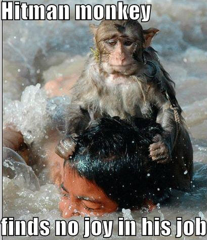 hitman monkey finds no joy in his job hitman monkey finds no joy in his job Sad :( Forum Fodder Dark Humor