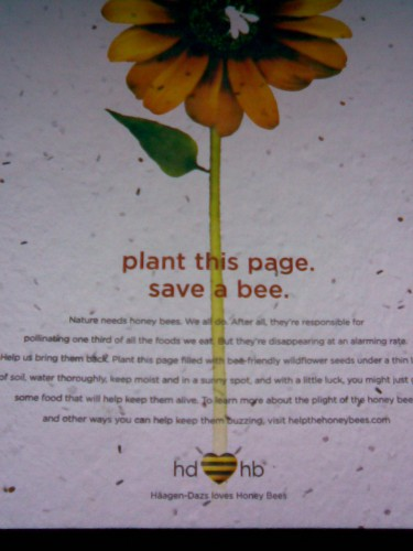 plant this page save a bee 375x500 plant this page   save a bee wtf