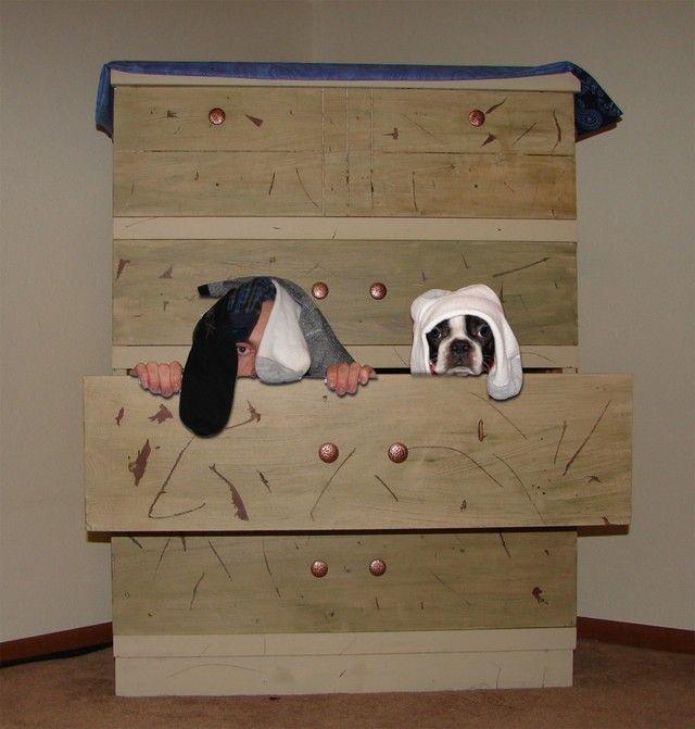 sock-drawer-bandits
