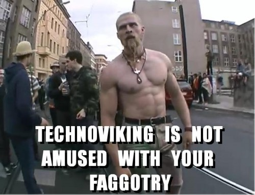 technoviking fagotry 500x382 Technoviking is not amused with your faggotry Sexy Forum Fodder