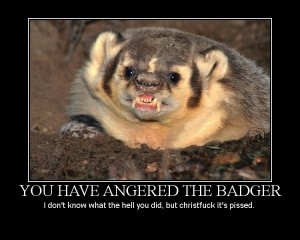 you have angered the badger