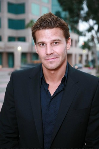 David Boreanaz - Sexy man