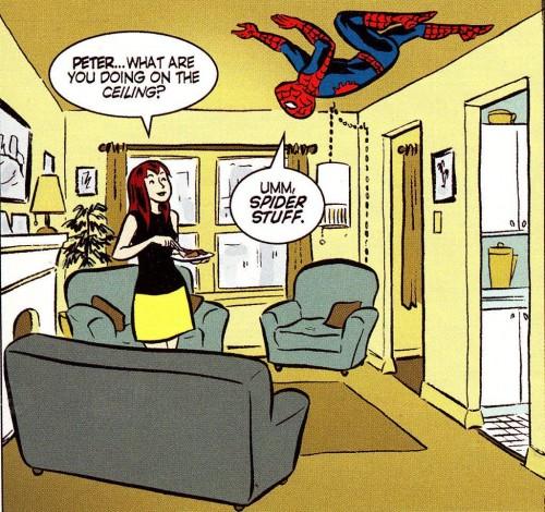 Spider Stuff
