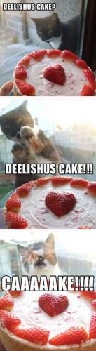 Deelishus Cake