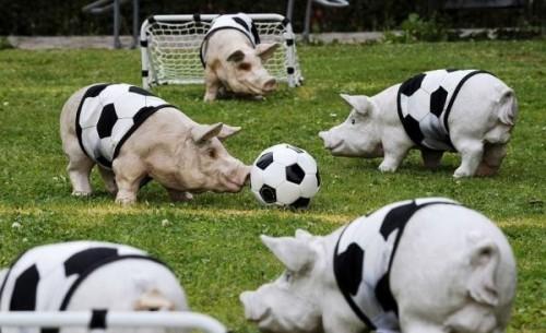Pig Soccer
