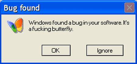 Windows Found A Bug