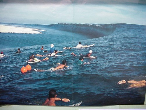 big wave 500x375 big wave Sports Nature