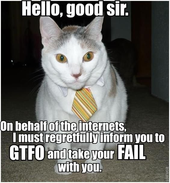 [Image: hello-good-sir-on-behalf-of-the-internet...th-you.jpg]