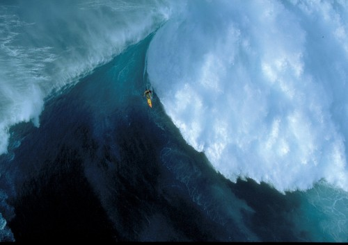 Mega Wave Rider