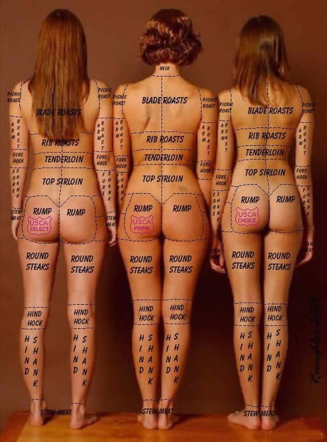 NSFW – The Human Parts