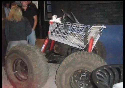 ATV Shopping Cart