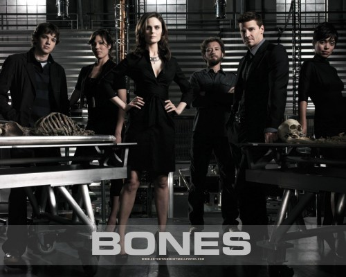 bone cast 500x400 bone cast  Wallpaper Television
