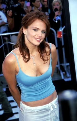 Dina Meyer - Blue Top