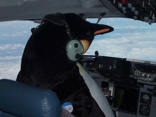 Penguin Pilot