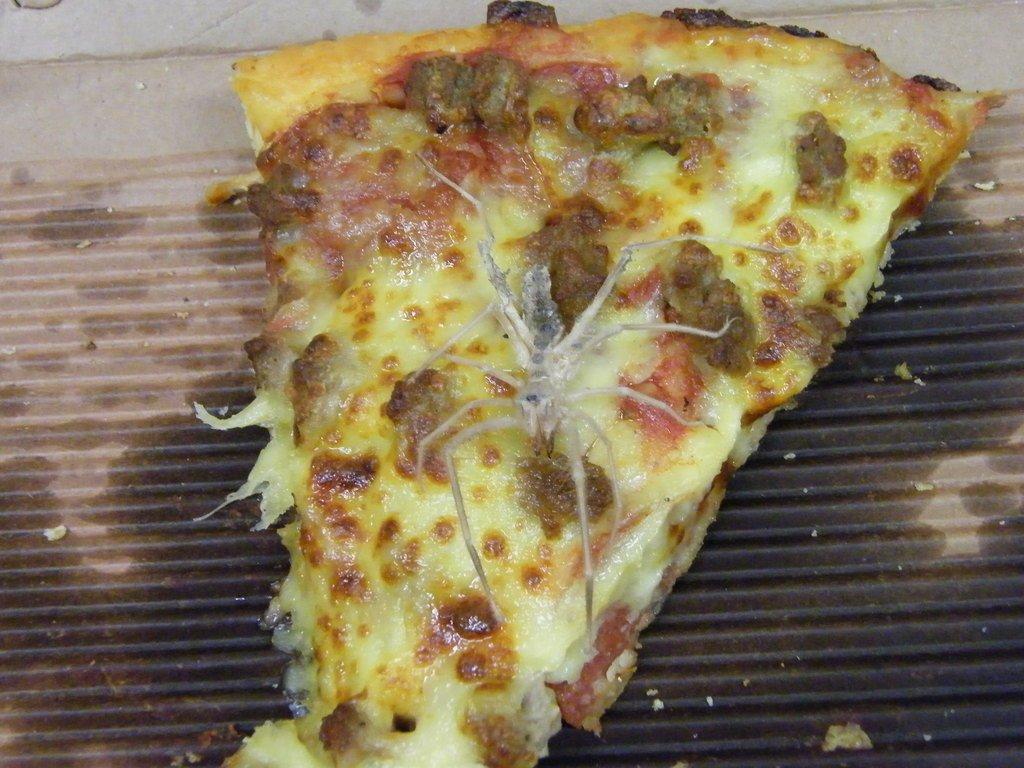Spider Pizza