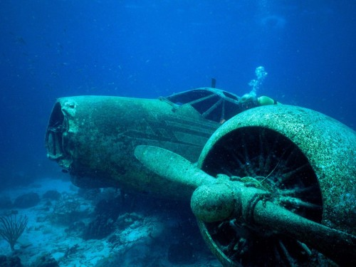 Sunken Plane