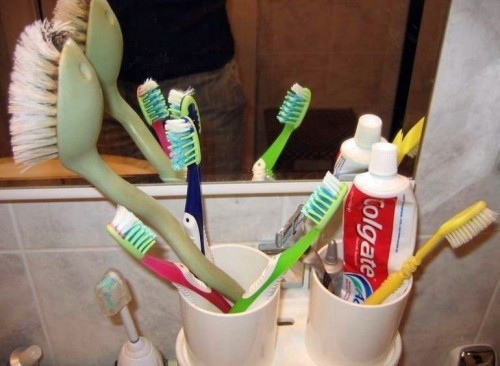 Tooth Brush WTF