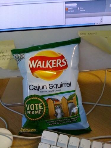 Walkers Cajun Squirrel  Chips