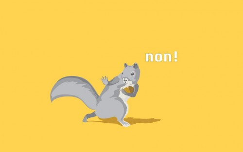 Squirrel NON