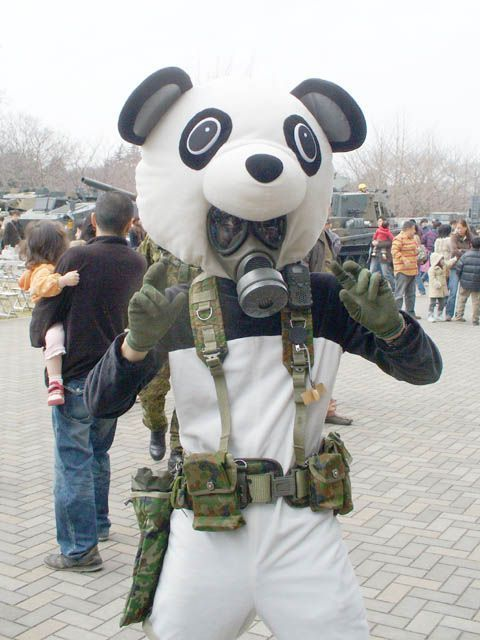 military gas mask panda