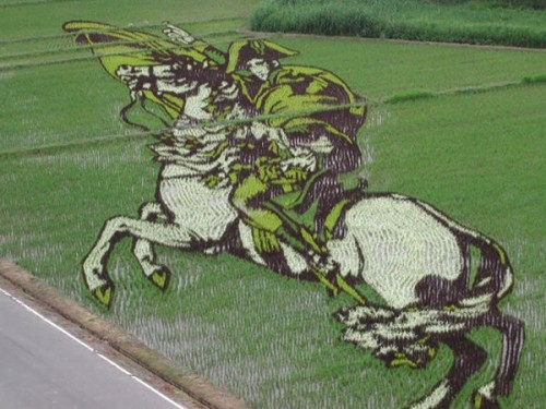 rice field art 03 500x375 Rice Field Art Food Art