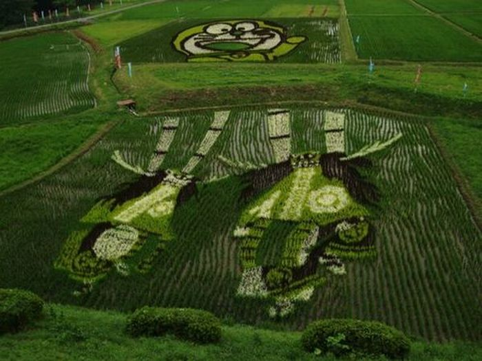 rice_field_art_16