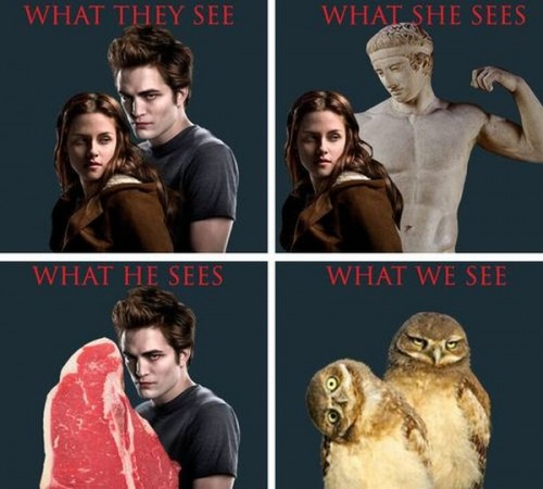 twilight - what we see