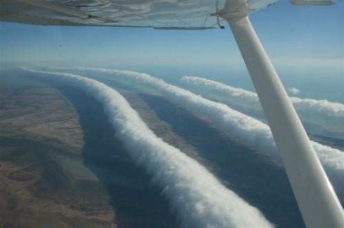 morninggloryclouds petroff big 500x332 Morning Glory Clouds Over Australia   Science!