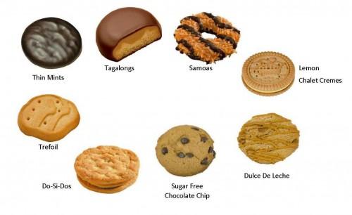 Girl Scout Cookie Descriptions