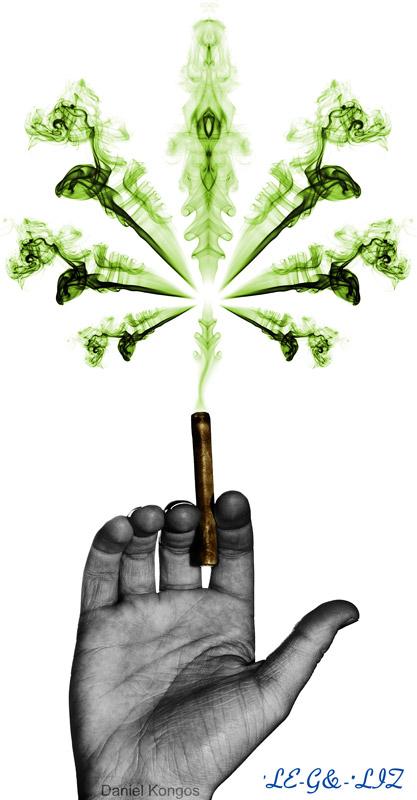 legalize1 Legalize! 420