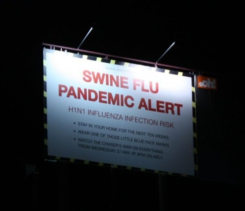 swine flue pandemic alert