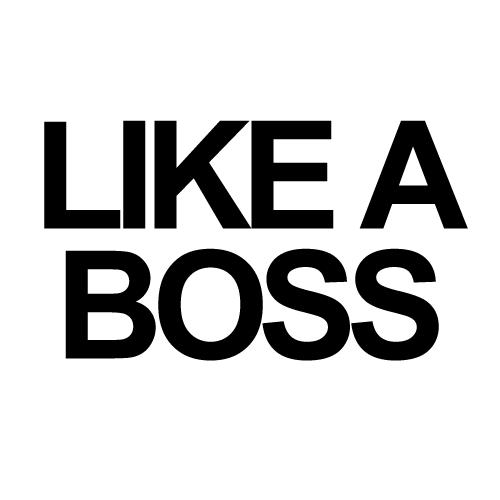 like a boss Like A Boss Humor