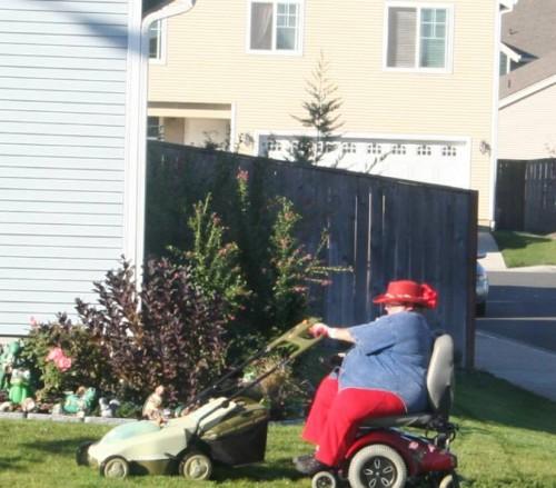 pimping lawn care service 500x439 pimping lawn care service wtf fat shaming
