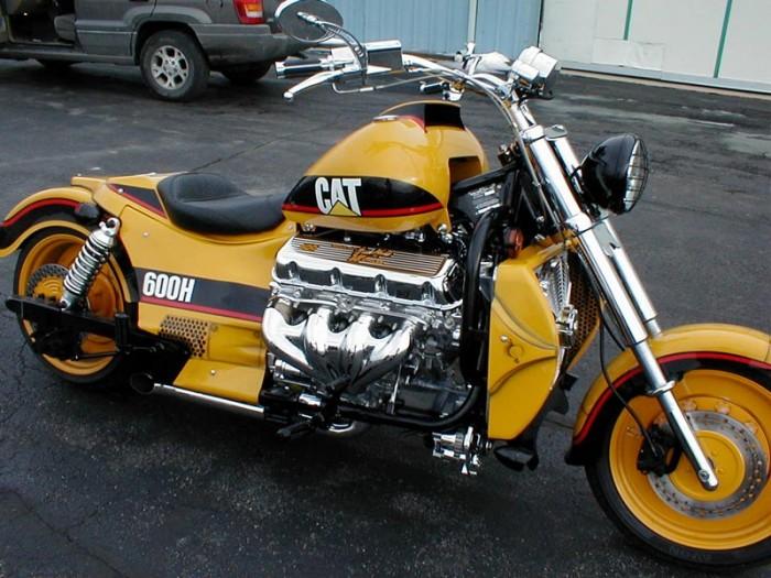 cat motorcycle