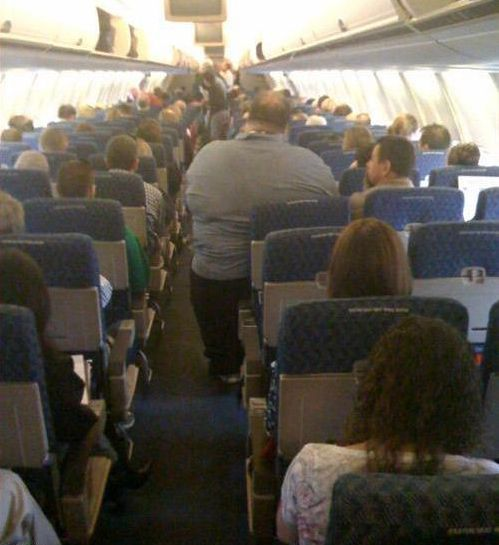 fat passenger fat passenger