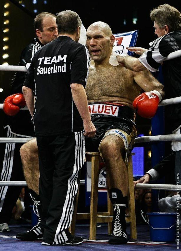 huge hairy boxer
