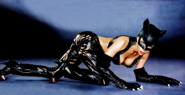 Catwoman Movie Wallpaper 700x361 Catwoman Movie Wallpaper