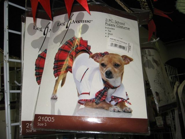 sexy school puppy costume