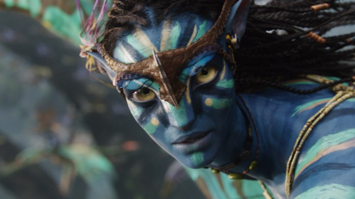 avatar - flying headgear