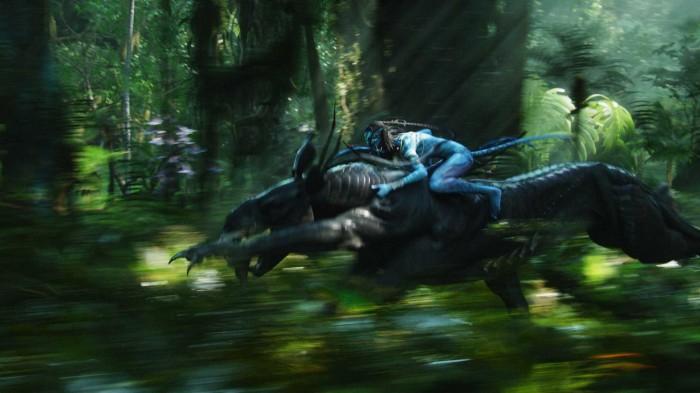 avatar wallpaper - na'vi rider