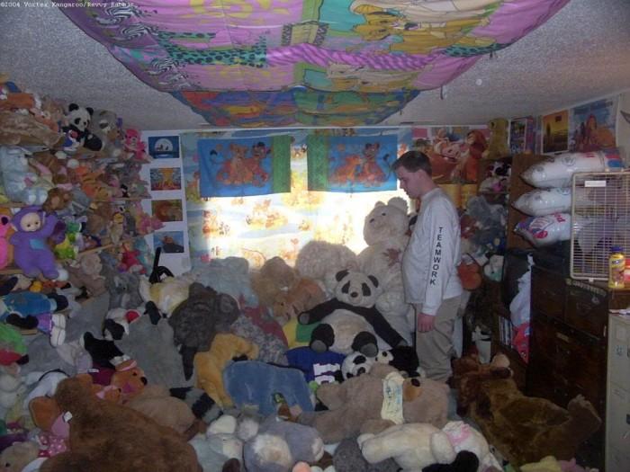 stuffed animal room