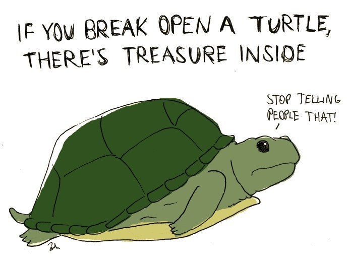 if you break open a turtle, there's treasure inside