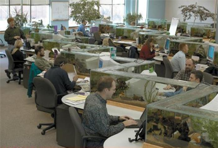 Work Space Aquarium