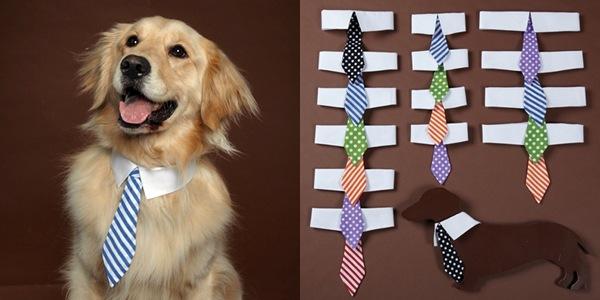 dog-tie