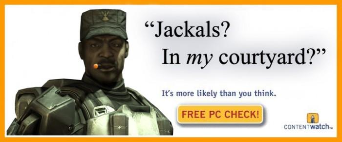 jackals - in my courtyard