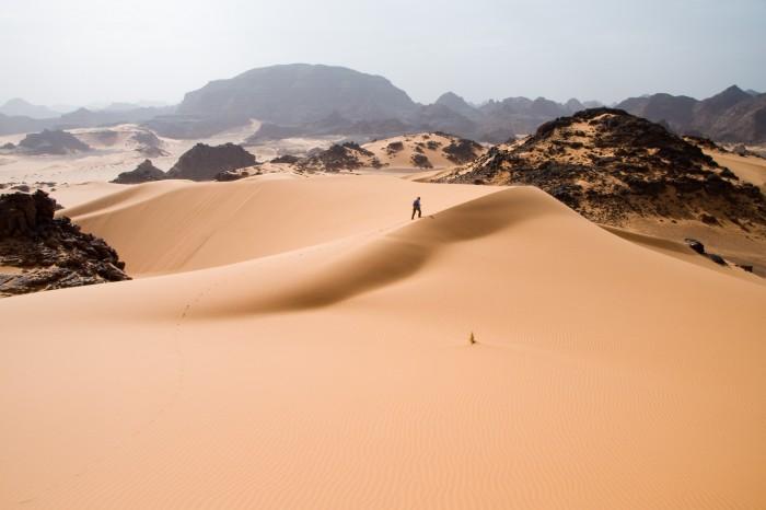 sand walker