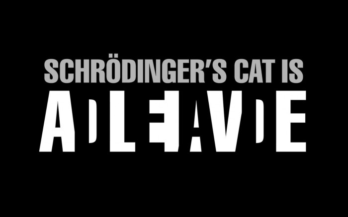 schodingers cat 700x437 schodingers cat Wallpaper Science! Humor