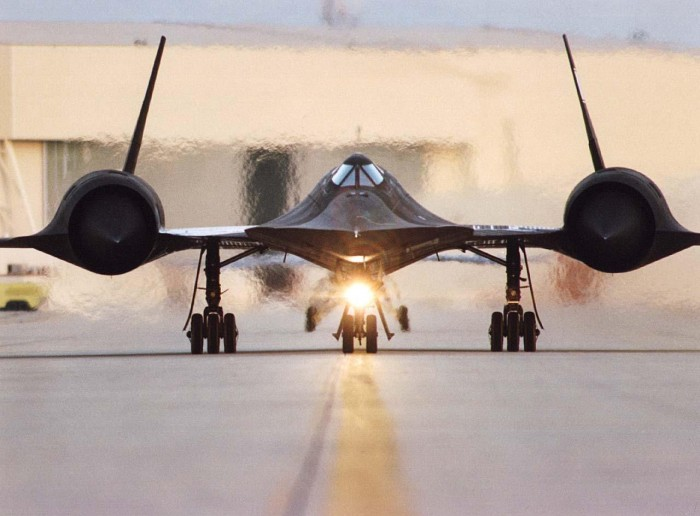 blackbird on the runway
